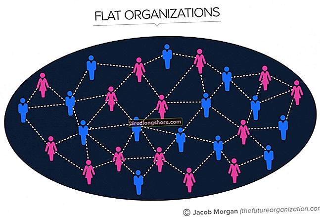 Výhody v rámci jednotnej organizačnej štruktúry