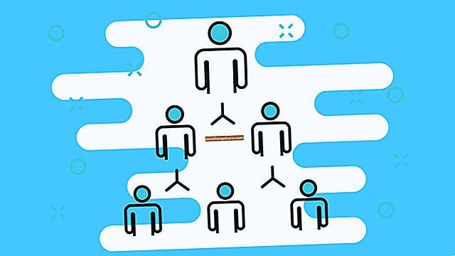 Výhody hybridních organizačních struktur
