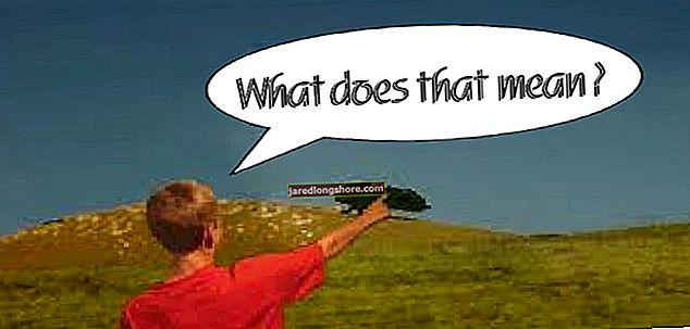 """Co znamená """"Obrázek může podléhat autorským právům""""?"""